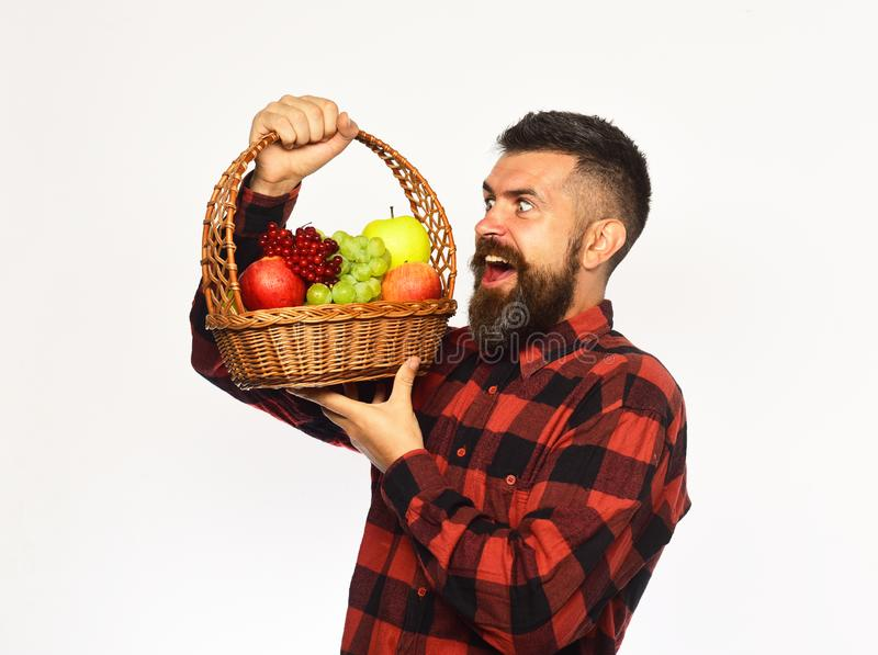 De landbouw en de herfst gewassenconcept Landbouwer met kwade glimlach royalty-vrije stock afbeeldingen