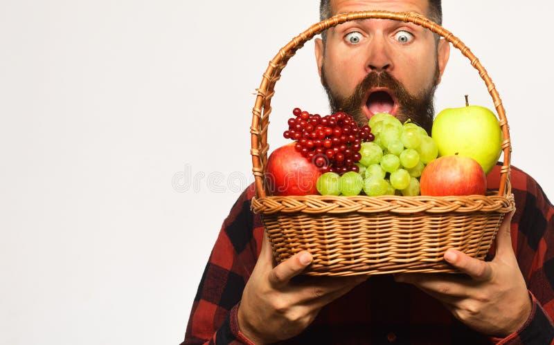 De landbouw en het tuinieren concept De mens met baard houdt mand royalty-vrije stock foto