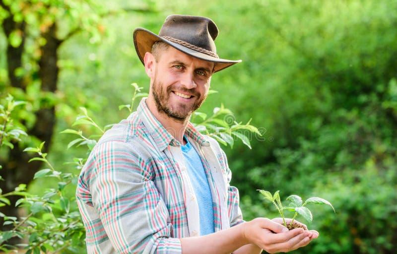 de landbouw en landbouwcultuur Het tuinieren spierboerderijmens in de zorginstallaties van de cowboyhoed Ecobedrijfsmedewerker De royalty-vrije stock afbeeldingen