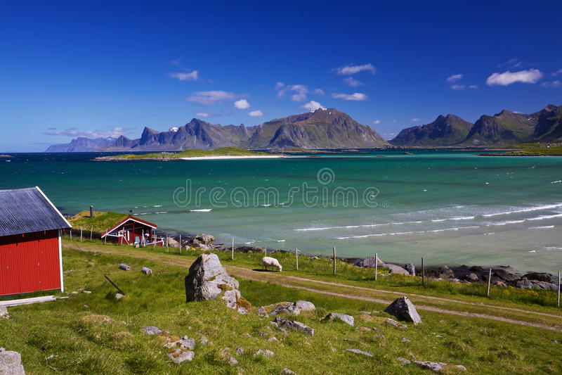 De landbouw in Noorwegen stock afbeelding
