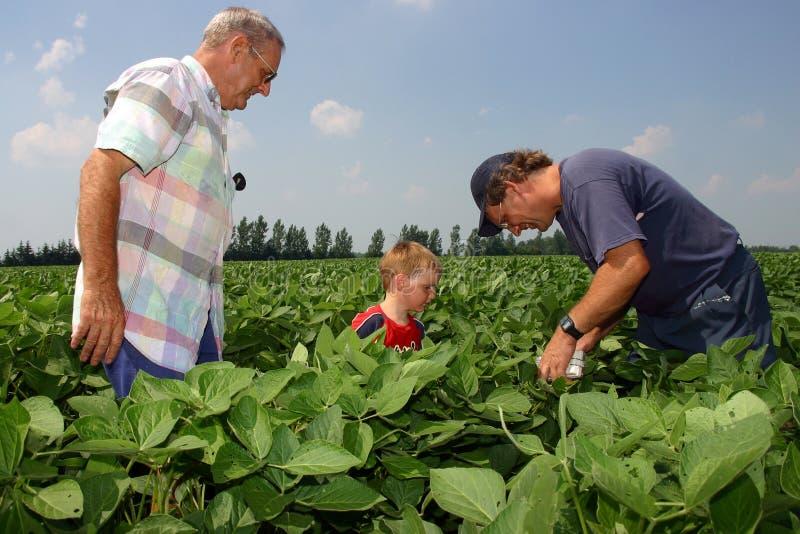 De Landbouw van de familie royalty-vrije stock afbeelding