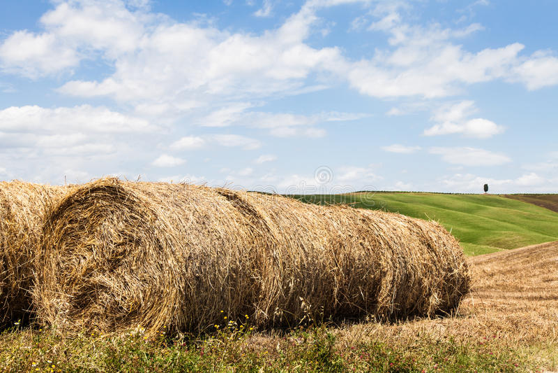 De landbouw van Toscanië royalty-vrije stock foto
