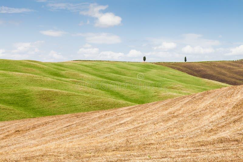 De landbouw van Toscanië stock fotografie