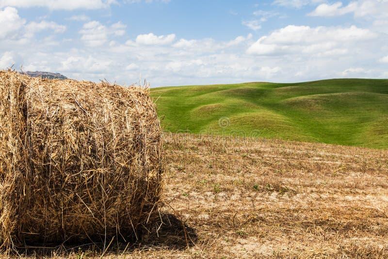 De landbouw van Toscanië royalty-vrije stock fotografie