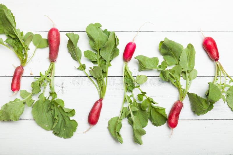 De landbouwachtergrond van de rode radijsmarkt Verse groene oogst stock afbeelding