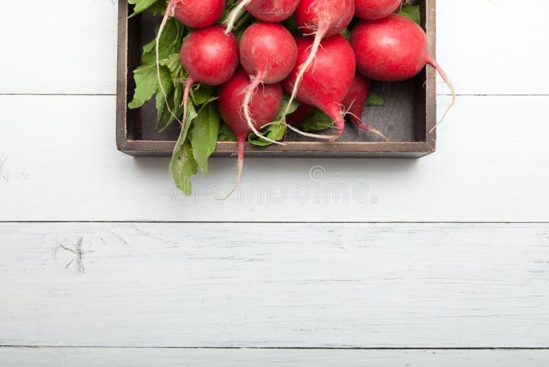 De landbouwachtergrond van de rode radijsmarkt Verse groene oogst, exemplaarruimte voor tekst royalty-vrije stock foto's