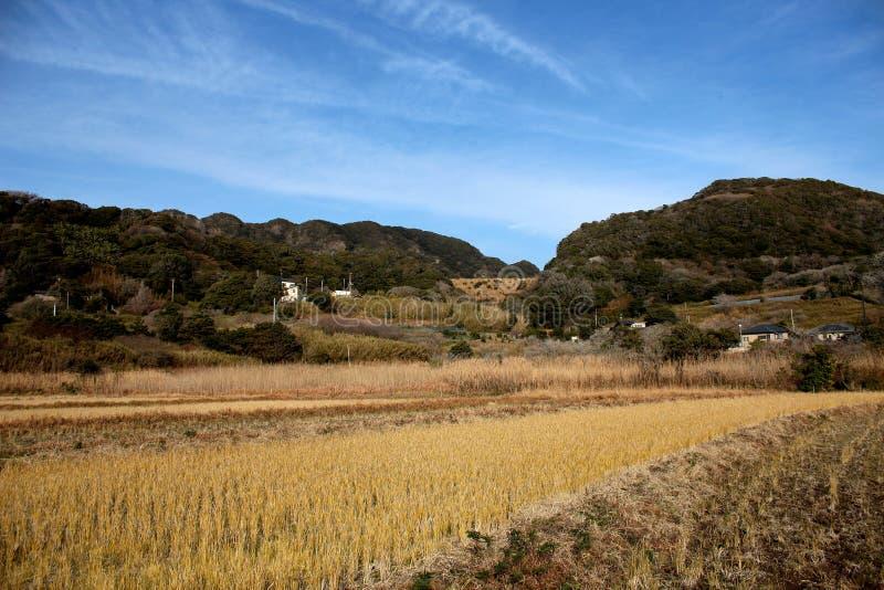 De landbouwbedrijven van Zuid-Chiba stock foto