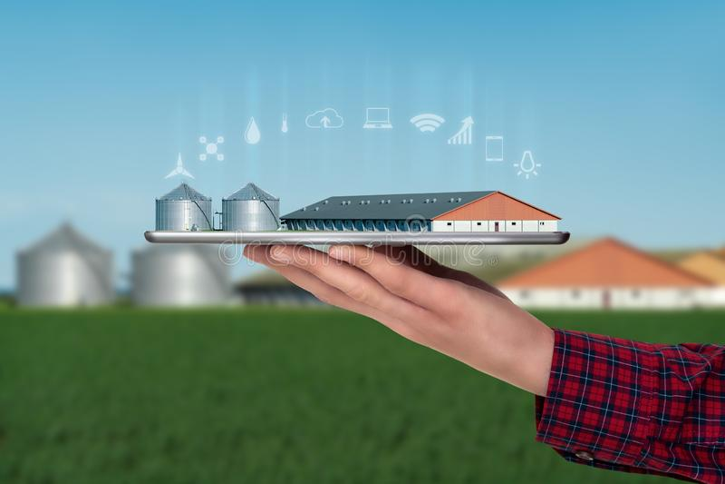 De landbouwer houdt een tablet met een slim landbouwbedrijf stock afbeelding