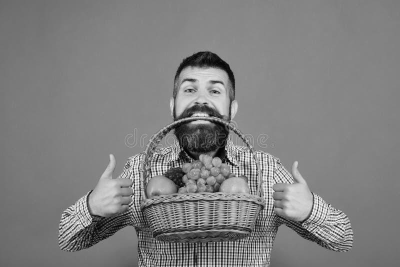 De landbouwer met gelukkig gezicht stelt appelen, druiven en Amerikaanse veenbessen voor stock foto