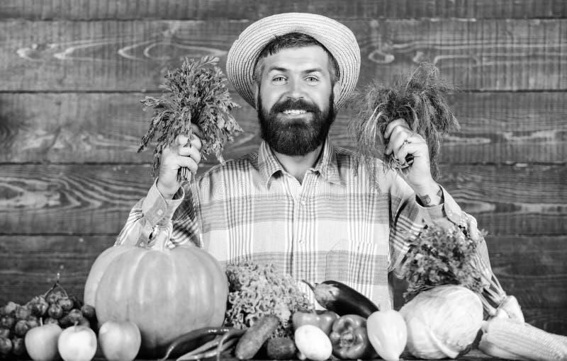 De landbouwer met inlandse groenten oogst de Uitstekende Mens van de kwaliteitsoogst met baard trots van zijn houten oogst stock fotografie