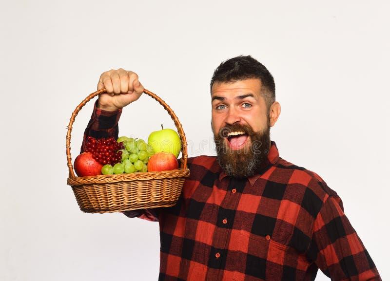 De landbouwer met opgewekt gezicht stelt appelen, druiven en Amerikaanse veenbessen voor stock foto's