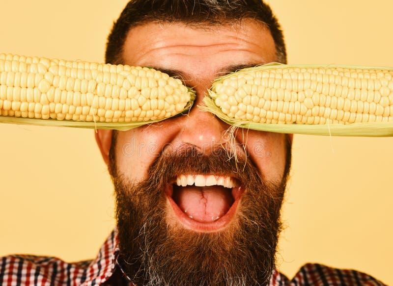 De landbouwer met vrolijk gezicht houdt geel graan die zijn ogen behandelen royalty-vrije stock afbeelding