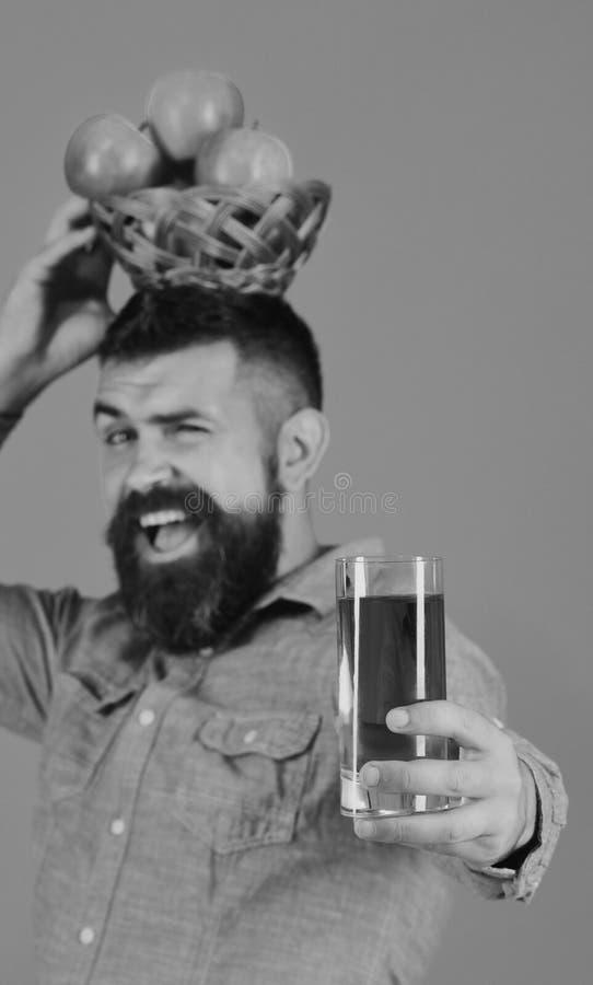 De landbouwer met vrolijk gezicht houdt verse appelsap en appelen royalty-vrije stock foto