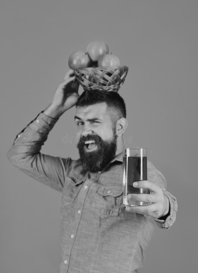De landbouwer met vrolijk gezicht houdt verse appelsap en appelen stock afbeelding