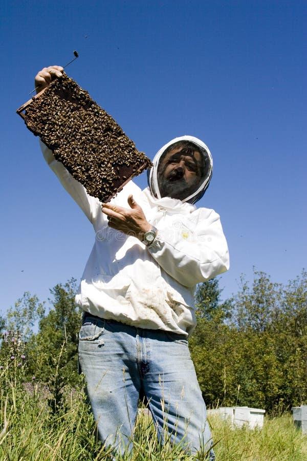 De Landbouwer van de honing stock afbeelding