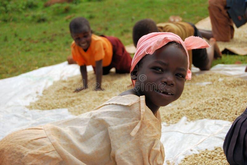 De landbouwer van de koffie royalty-vrije stock foto's