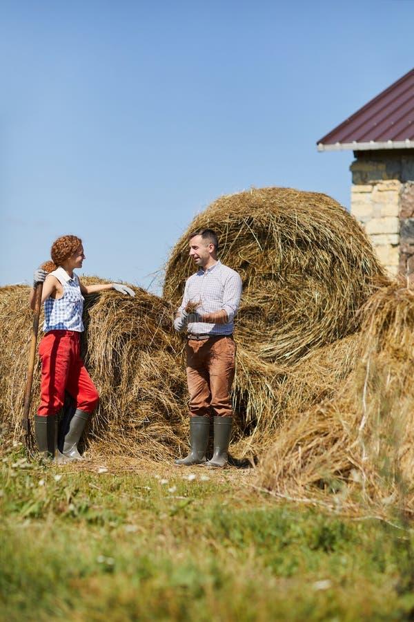 De landbouwers door hooi stapelen royalty-vrije stock afbeeldingen
