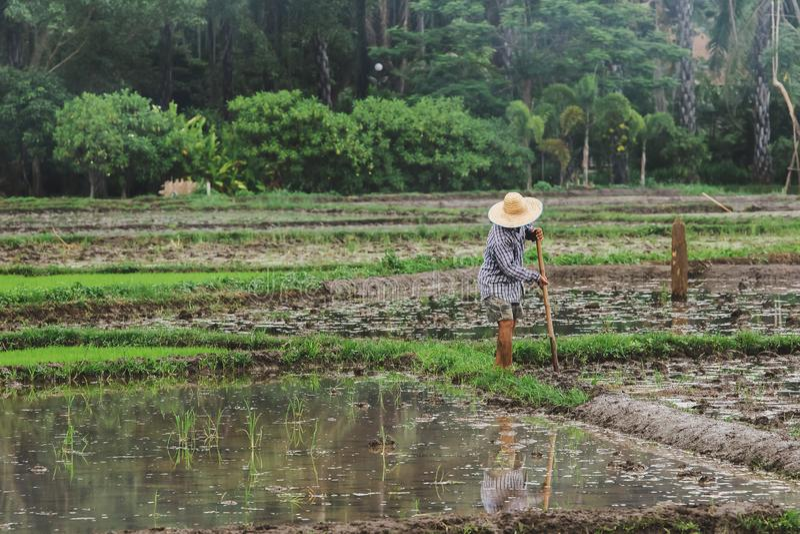 De landbouwers graven de grond royalty-vrije stock fotografie