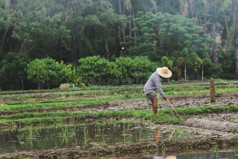 De landbouwers graven de grond stock foto