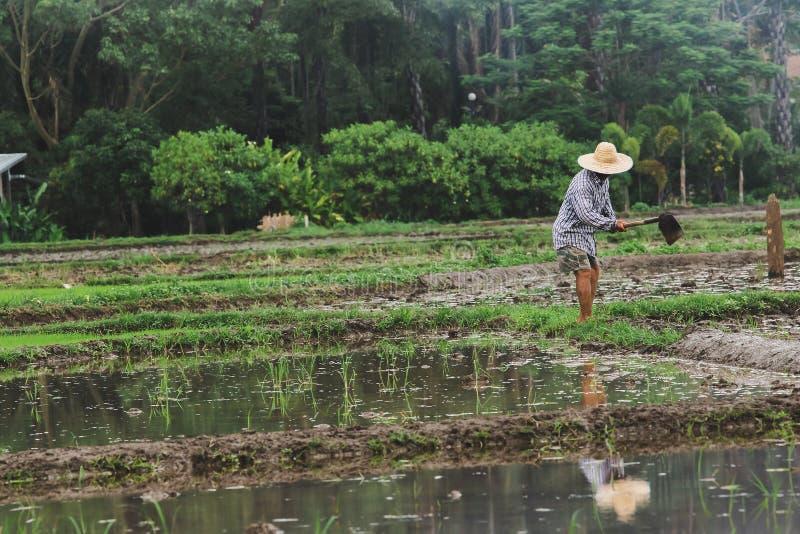 De landbouwers graven de grond stock afbeelding