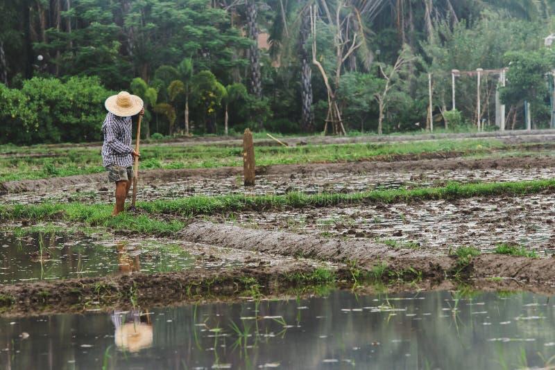 De landbouwers graven de grond royalty-vrije stock foto