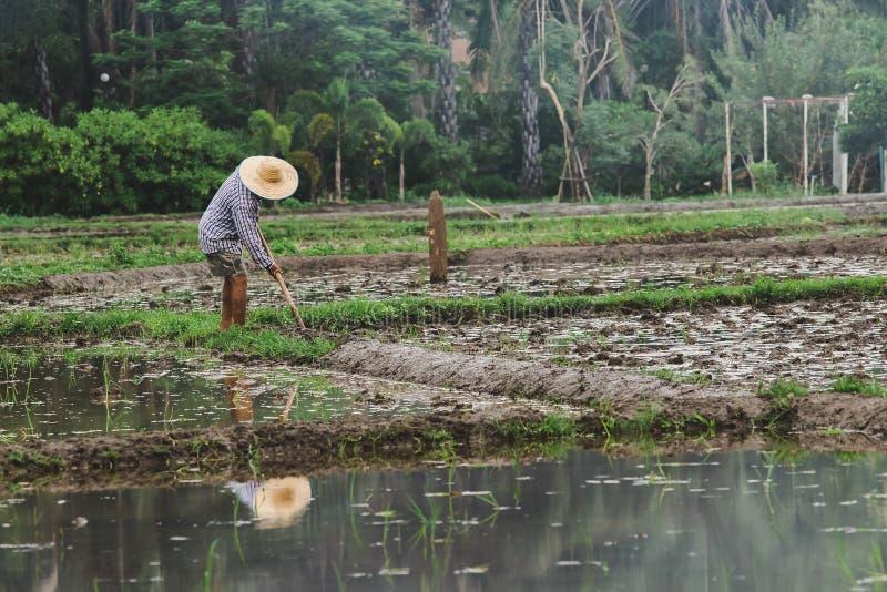 De landbouwers graven de grond royalty-vrije stock foto's