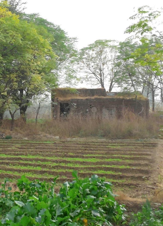 De landbouwers huisvesten stock foto's