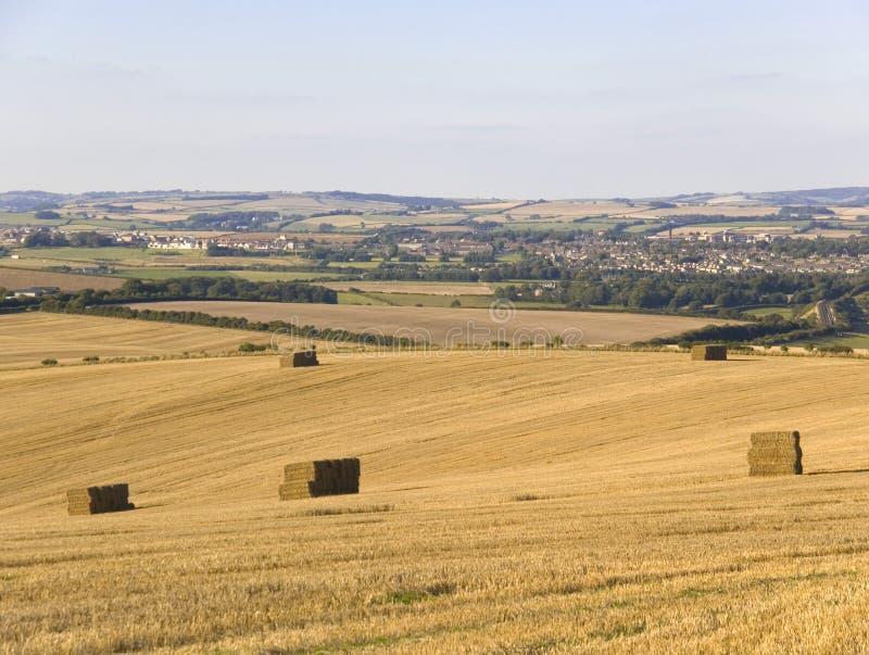 De landbouwgrond Dorset Engeland van Dorchester stock afbeelding