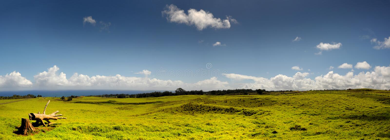 De Landbouwgrond van Hawaï