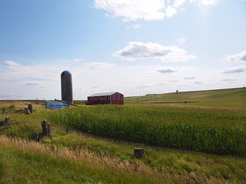 De Landbouwgrond van Iowa met Graan stock foto's