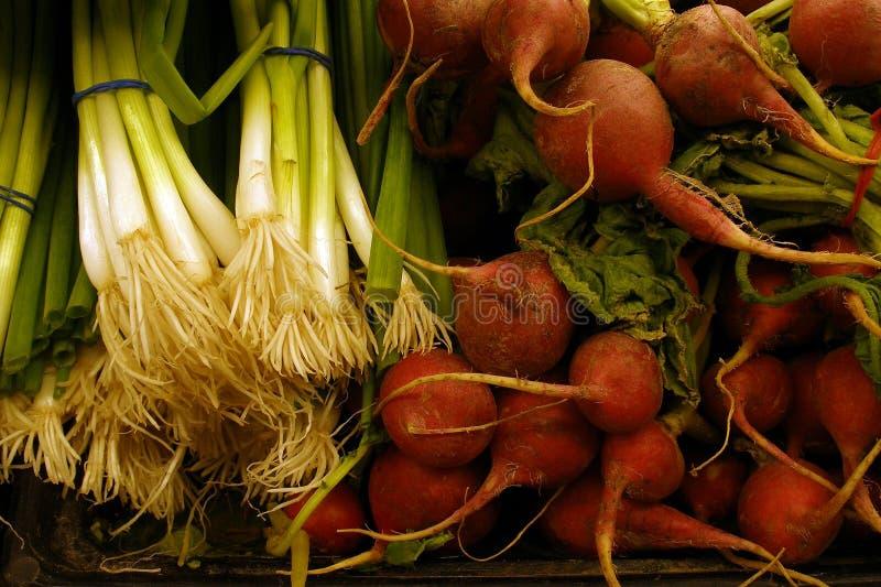 De Landbouwproducten van  stock afbeelding