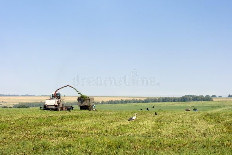 De landbouwwerken royalty-vrije stock foto