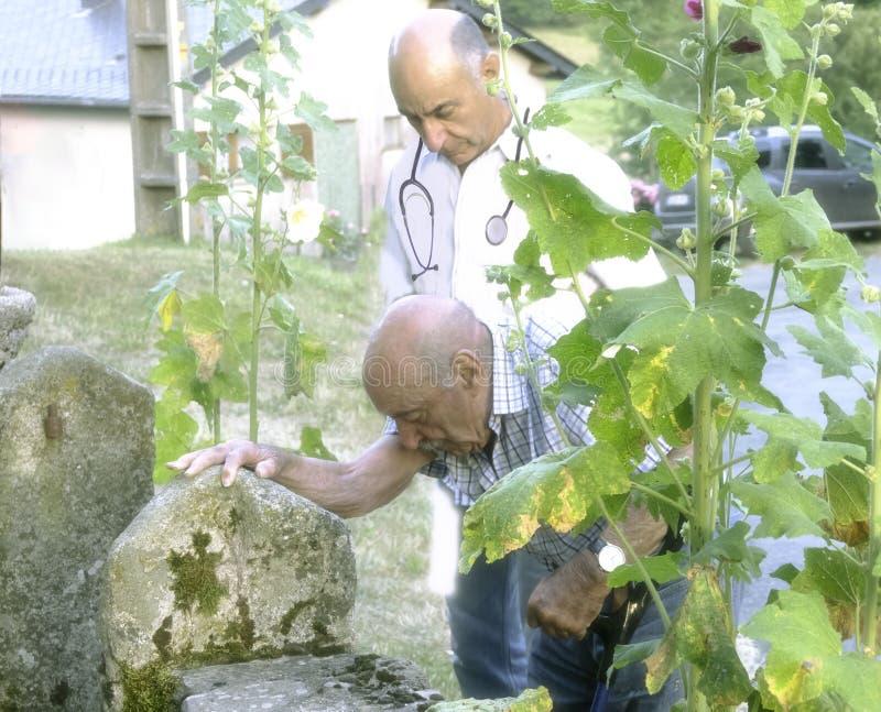De landelijke arts begeleidt patiënt die in zijn woning in een plattelander achter struiken van stokroos plaatsen royalty-vrije stock afbeeldingen