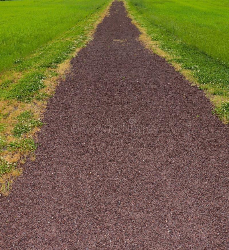 De landelijke Weg door Landbouwbedrijf leidt omhoog royalty-vrije stock foto