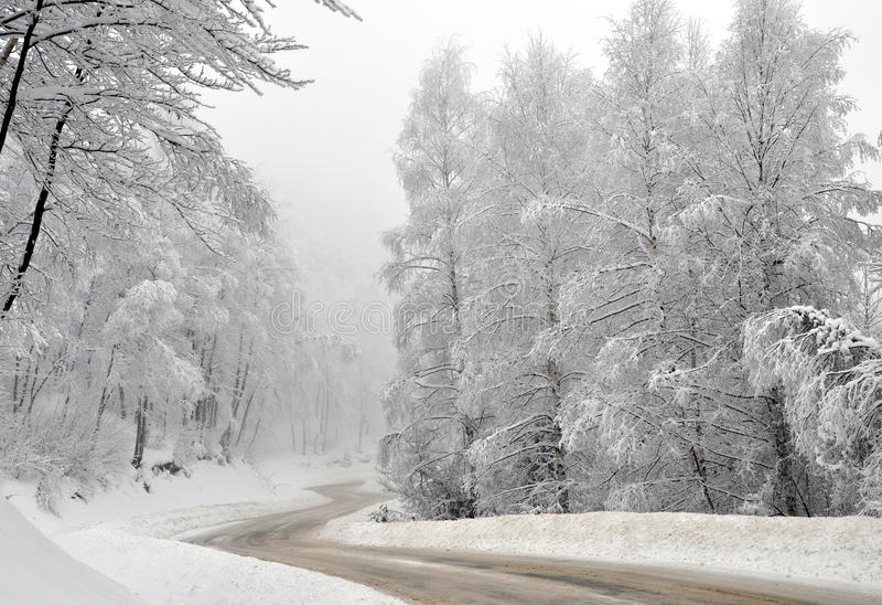 De landelijke weg van de winter door de bevroren bomen royalty-vrije stock foto