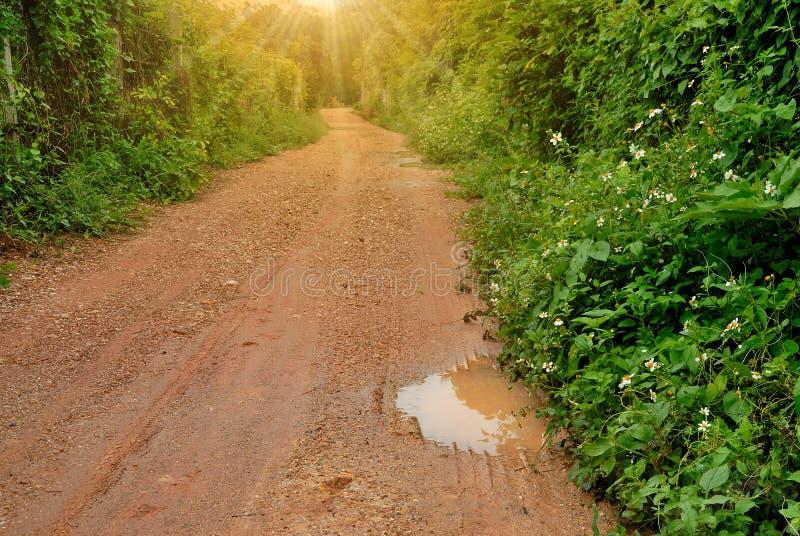 De landelijke wegen zijn hobbelig langs de omheining stock afbeelding