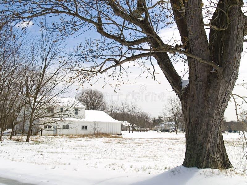 De landelijke Winter stock afbeeldingen
