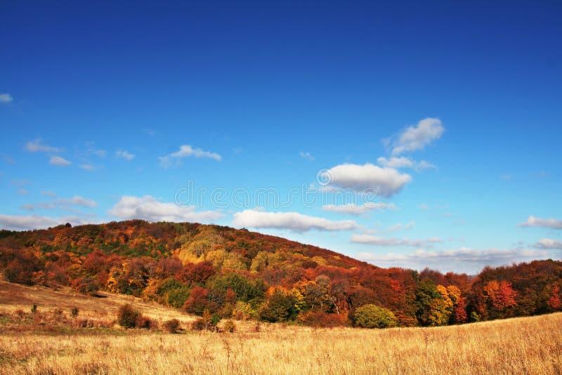 De landschappen van de herfst stock fotografie
