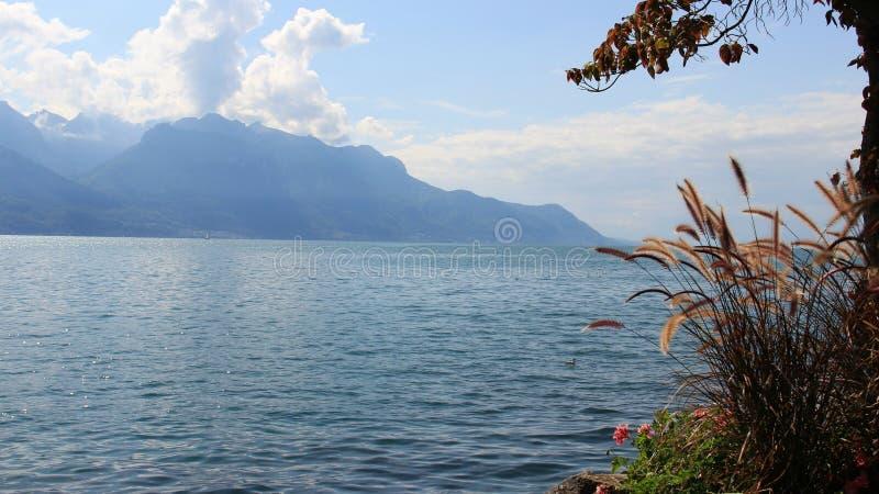 De Landschappen van het Genavemeer met Gras royalty-vrije stock afbeelding