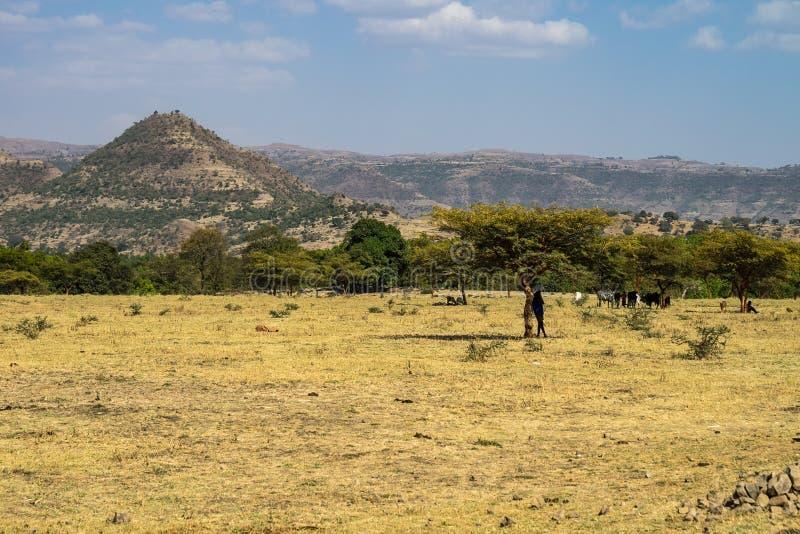 De landschapsmening dichtbij de Blauwe Nijl valt in Amara gebied van Ethiopië, Afrika royalty-vrije stock foto