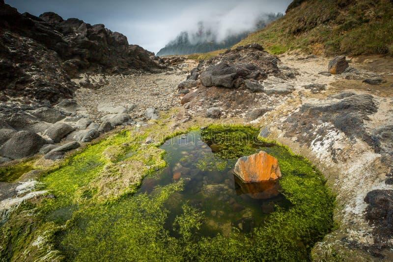 De Landtongen van de kust - Oregon royalty-vrije stock foto