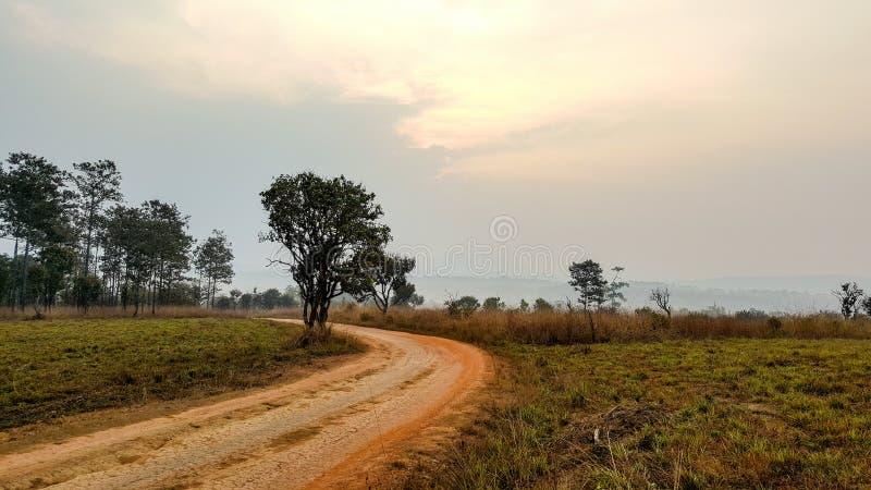 De landweg stock foto