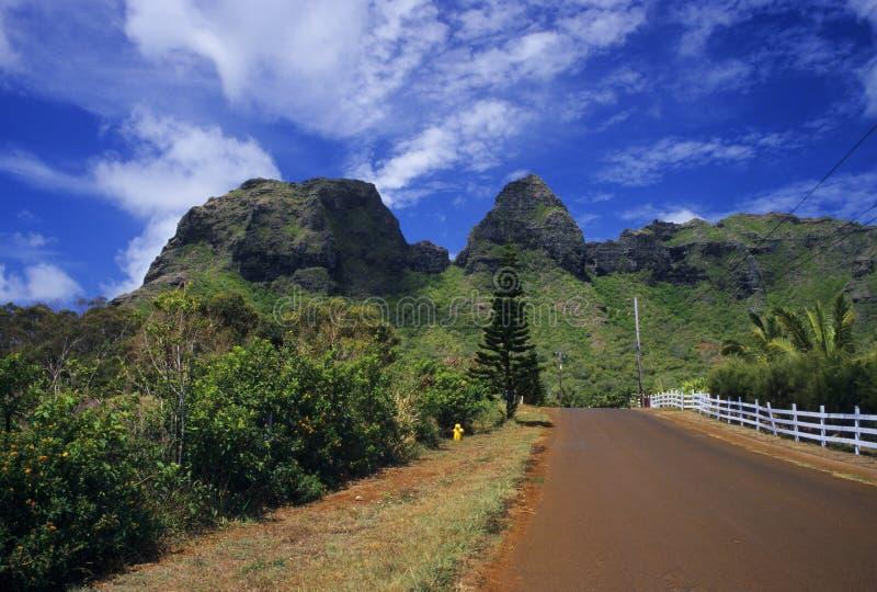 De landweg van Kauai stock afbeelding
