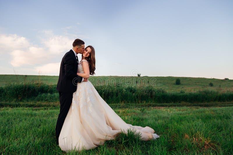 De lange bruidegom kust bride& x27; s wang teder stock afbeelding