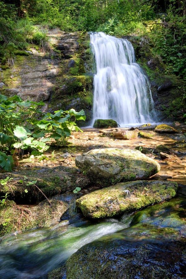 De lange waterval van de blootstellingszomer in bos stock foto