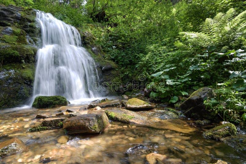 De lange waterval van de blootstellingszomer in bos royalty-vrije stock afbeeldingen