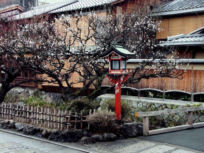 De lantaarn van Gion in de lente royalty-vrije stock afbeelding