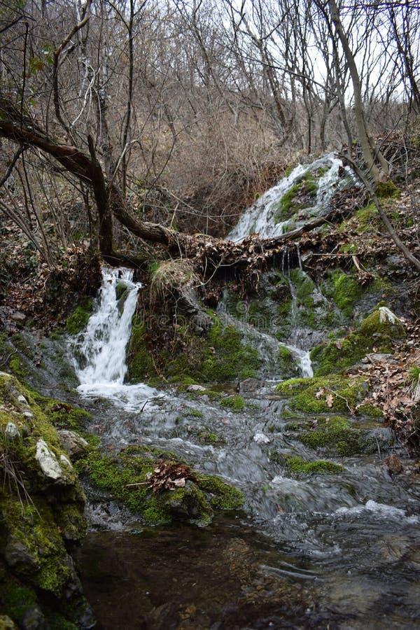 ` de las rocas azules del ` del parque de naturaleza - Bulgaria, Sliven imagen de archivo