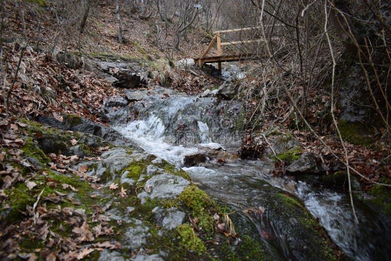 ` de las rocas azules del ` del parque de naturaleza - Bulgaria, Sliven fotos de archivo libres de regalías