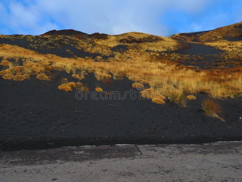 De Lavagebieden van Onderstel Etna stock fotografie